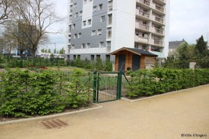 ANGERS_photo_jardin_pieds_immeubles